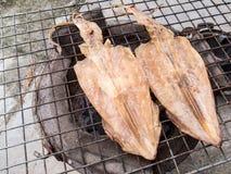 grillad bläckfisk Arkivfoto
