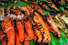 grillad blandad skaldjur Royaltyfri Fotografi