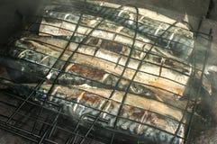 Grillad closeup för makrill fisk royaltyfria bilder