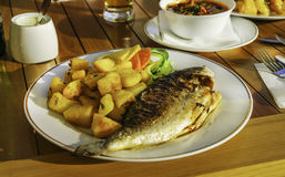 Grillad Dorada fisk Arkivbild