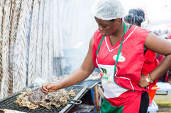 Grillad festival av Abidjan Fotografering för Bildbyråer