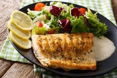 Grillad fisk för arktisk röding med blandningsallad- och såsnärbild Hori royaltyfria foton