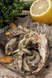Grillad fisk i sås och kryddor Royaltyfri Foto