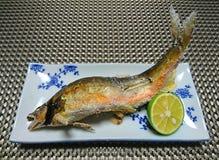 Grillad fisk med salt och limefrukt Royaltyfri Bild