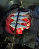 grillad fisk p? en thai mat f?r kolugn royaltyfri bild