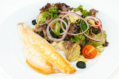 Grillad fiskfilé med grön sallad Royaltyfri Fotografi