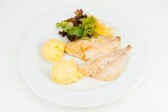 Grillad fiskfilé med grön sallad Arkivfoto