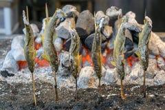Grillad forellfisk på den Kegon vattenfallet Royaltyfri Bild
