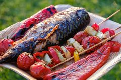 Grillad grönsaksteknålar och fisk av makrillen i en örtmarinad på en platta, lök, grillad grillfest för pepparzucchini tomat Royaltyfria Bilder