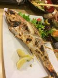 Grillad hel fisk för japansk stil Royaltyfri Bild
