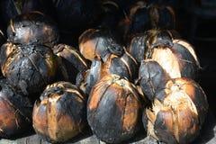 Grillad kokosnöt, kokosnötbrännskada royaltyfria foton