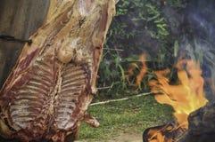 grillad lamb Royaltyfria Foton