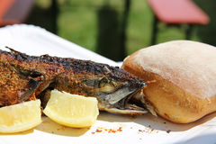grillad mackerel Arkivfoto