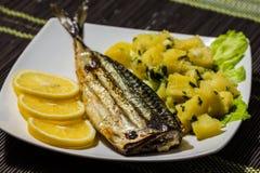 grillad mackerel Royaltyfri Foto