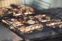 grillad meat royaltyfria bilder