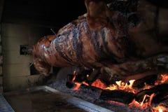 grillad pig Arkivfoton