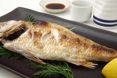 Grillad rosig havsbas med salt japansk mat med risvin Arkivfoton