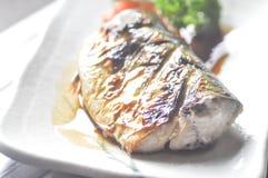 Grillad saba eller grillad blå makrill i japansk stil Fotografering för Bildbyråer