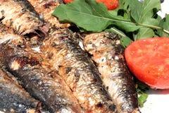 grillad sardinesrökning Arkivbilder