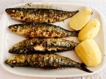 Grillad sardinplatta med potatisen Royaltyfri Fotografi