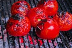 grillad tomat Arkivfoto