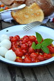Grillad tomat Caprese Royaltyfria Foton