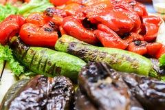 Grillad veggiesbbq-peppar, zucchini och aubergine Vegetarisk gurka för mat background royaltyfri foto