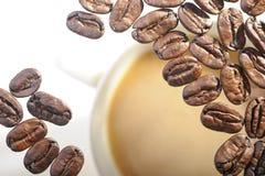 Grillade arabicakaffebönor Royaltyfri Bild