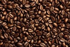 Grillade bruna kaffebönor Arkivfoto