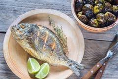 Grillade Dorade Royale Fish med brussel - groddar Arkivbilder