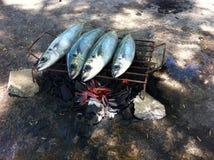 grillade fiskar Fotografering för Bildbyråer