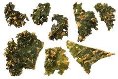 Grillade grönkålchiper som isoleras på vit bakgrund royaltyfria foton