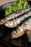 grillade japanska sardines Arkivbild