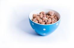Grillade jordnötter med socker i blåttbunke Royaltyfri Foto