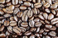 Grillade kaffebönor Royaltyfria Foton