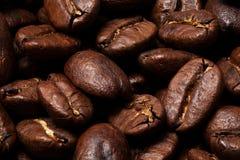Grillade kaffebönor Royaltyfri Fotografi