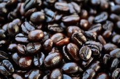 Grillade kaffebönor Arkivfoton
