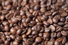 Grillade kaffebönor blir grund fokusen Royaltyfria Foton