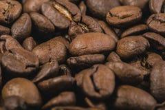 Grillade kaffebönor, kan användas som en bakgrund Arkivbild
