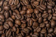 Grillade kaffebönor, kan användas som en bakgrund Royaltyfri Foto