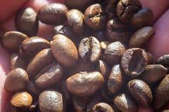 Grillade kaffebönor, kan användas som en bakgrund Royaltyfria Bilder