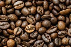 Grillade kaffebönor, kan användas som en bakgrund Makro för textur för kaffebönor Arkivbilder