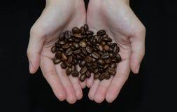 Grillade kaffebönor, ordnar till för att tjäna som Fotografering för Bildbyråer