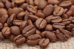 Grillade kaffebönor på plundra Arkivfoton