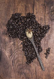 Grillade kaffebönor som är ordnade i formen av Afrika på gammalt trä Royaltyfri Fotografi