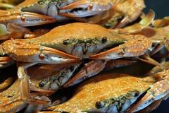 Grillade krabbor royaltyfria bilder