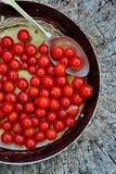 Grillade nya Cherry Tomatoes Arkivfoton