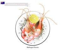 Grillade räkor, en stor traditionell australisk maträtt vektor illustrationer