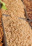 Grillade, saltade och skalade jordnötter Royaltyfri Foto