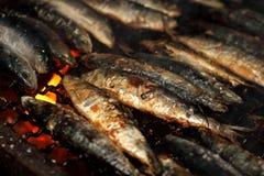 Grillade sardiner Arkivfoto